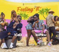 1 CeDi – Feeling It Ft. TeePhlow(Prod. By Kv Bangerz)