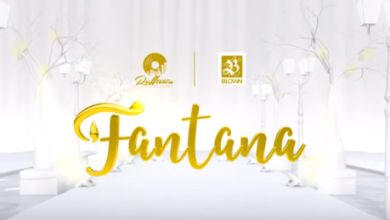 Photo of Official Video: Fantana – Rich Gyal Anthem