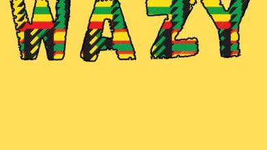 Photo of Hameed Idowu – Wazy (Remix) Ft. Mr Eazi