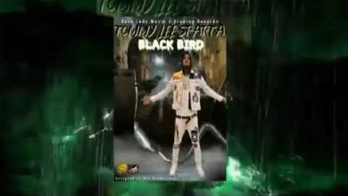 Photo of Tommy Lee Sparta – Black Bird