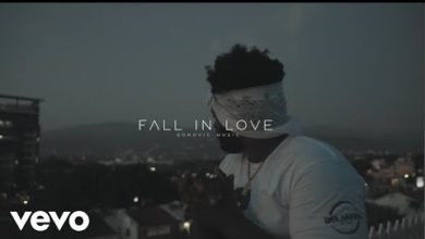 Photo of Chronic Law – Fall In Love