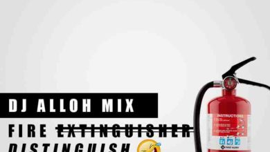 Photo of DJ Alloh – Fire Distinguish (Mixed By DJ Alloh)