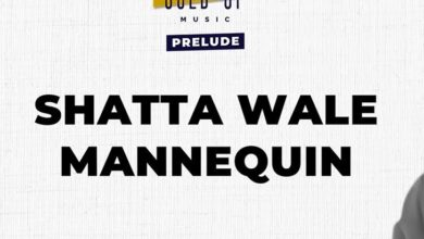 Photo of Shatta Wale x Gold Up – Mannequin (Prod. by Gold Up Music)