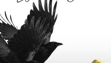 Photo of Lyrical Joe – 2Birds (Prod. By Phredxter)