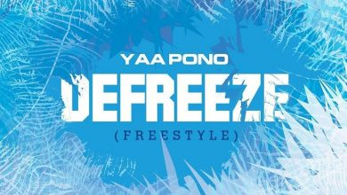 Photo of Yaa Pono – Defreeze (Freestyle)
