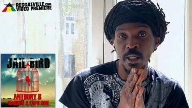 Photo of Official Video: Anthony B – Jailbird Ft CapoDon & Kahpun