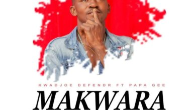 Photo of Kwadjoe Defender – Makwara Ft Papa Pee