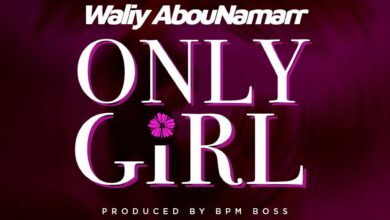 Photo of Waliy AbouNamarr – Only Girl (Prod. By BPM BOSS)