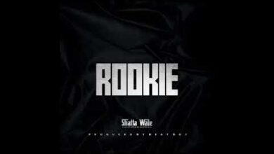 Photo of Shatta Wale – Rookie