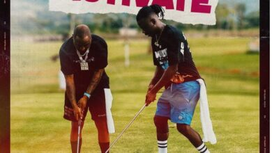 Photo of Stonebwoy – Activate Ft Davido